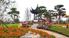 从满目疮痍到生机盎然,河北邢台的完美转身,结缘中国园林之乡!