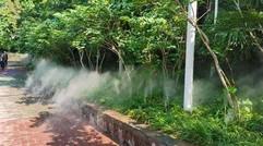 """紫荆山公园:透出满园绿 尽在""""仙境""""中"""