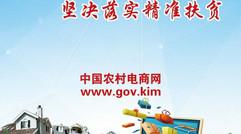 中国农村电商网www.gov.kim