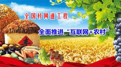 中国农村电商网上线,全国村网通工程进入落地攻坚阶段