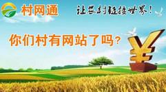 村网通农村政务网