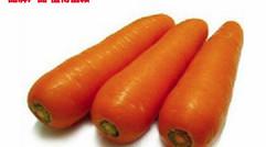 专供出口绿色无公害新鲜胡萝卜