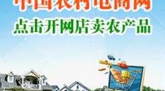 中国农村电商网