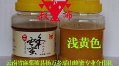 500克装浅黄色蜂蜜