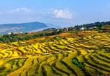 """乡村旅游的未来发展前景:从""""三出""""到""""三进"""""""