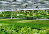 秦皇岛市农业农村局积极打造农业物联网示范区