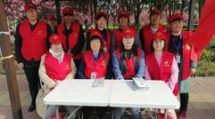 夏建胜率领志愿者团队在华夏南路为鹤壁樱花节服务
