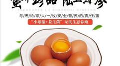 蛋中珍品  陆上海参