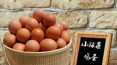 大自然孕育的好鸡蛋