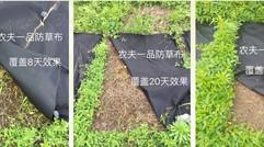 使用农夫一品 防草布的效果