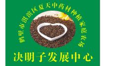 鹤壁市淇滨区夏天中药材种植家庭农场