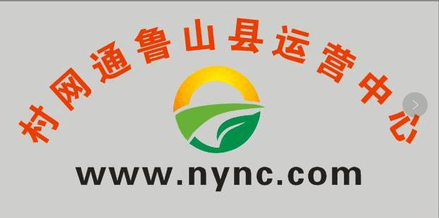 村网通鲁山县运营中心.png