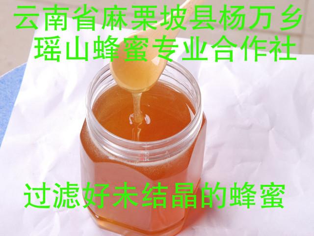 过滤好未结晶的蜂蜜.jpg